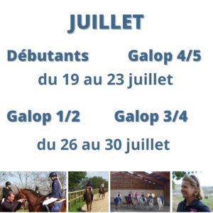 stage équitation carcassonne vacances